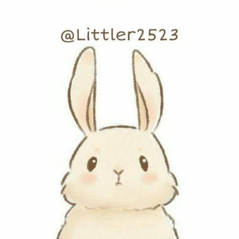 @littler2523