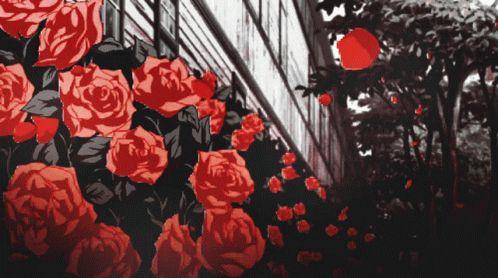 Rose nude photos